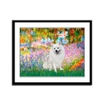 Garden / Eskimo Spitz #1 Framed Panel Print