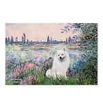 Seine / Eskimo Spitz #1 Postcards (Package of 8)