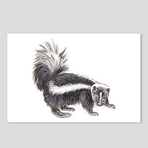 Striped Skunk Postcards (Package of 8)