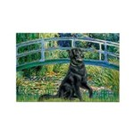 Flat Coated Retriever 2 Rectangle Magnet (10 pack)