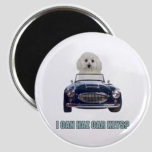 LOL Bichon Frise Magnet
