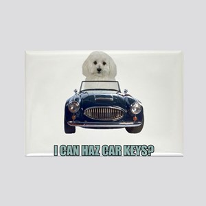 LOL Bichon Frise Rectangle Magnet