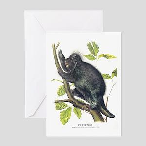 Audubon Porcupine Animal Greeting Card