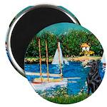Sailboats / Flat Coated Retri Magnet
