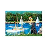 Sailboats / Flat Coated Retri Mini Poster Print