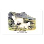 Audubon Mountain Goat Animal Rectangle Sticker 10