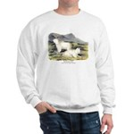 Audubon Mountain Goat Animal (Front) Sweatshirt