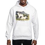 Audubon Mountain Goat Animal (Front) Hooded Sweats