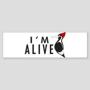 I'm Alive -- Woodpecker Bumper Sticker