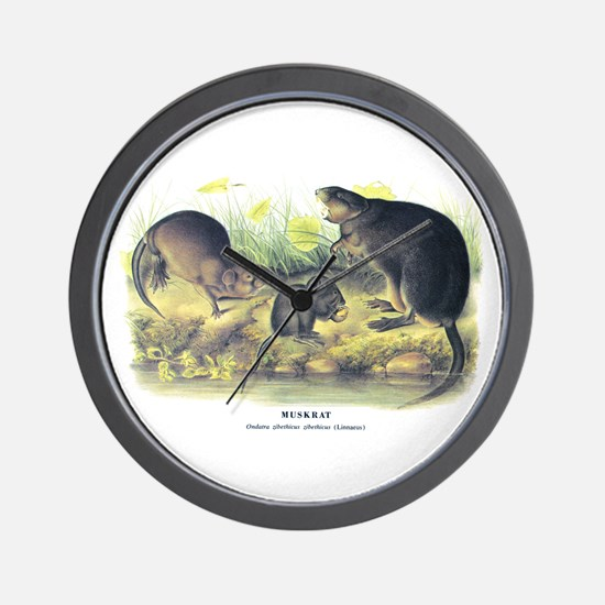 Audubon Muskrat Animal Wall Clock