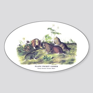 Audubon Gopher Animal Oval Sticker