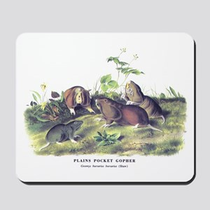 Audubon Gopher Animal Mousepad