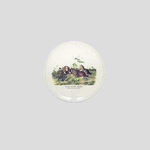 Audubon Gopher Animal Mini Button