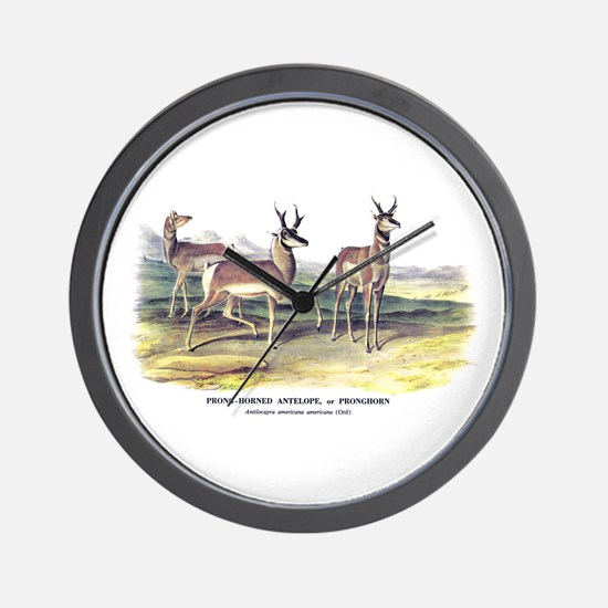 Audubon Pronghorn Antelope Wall Clock
