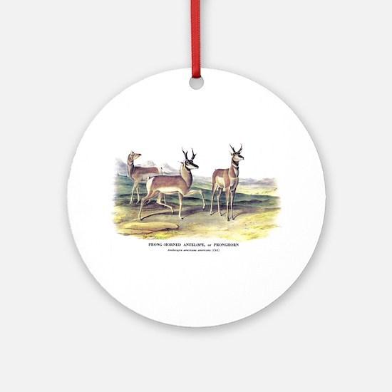 Audubon Pronghorn Antelope Ornament (Round)