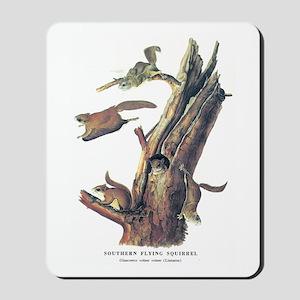 Audubon Flying Squirrel Mousepad