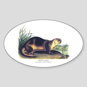 Audubon River Otter Animal Oval Sticker