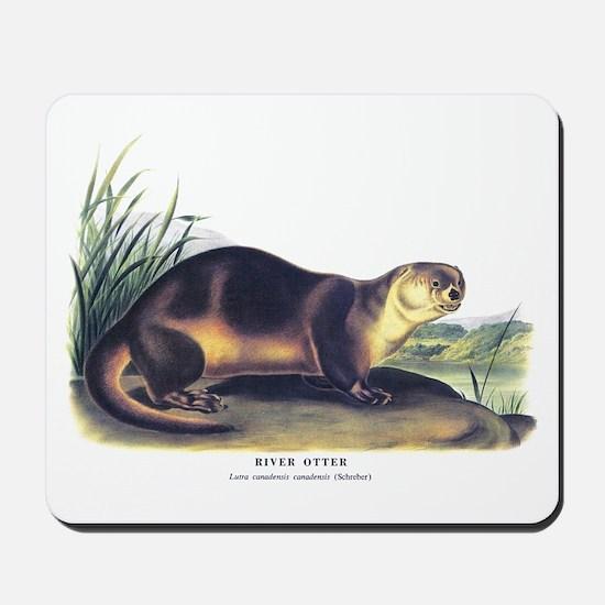 Audubon River Otter Animal Mousepad