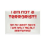 I am NOT a terrorist! Rectangle Magnet (100 pack)