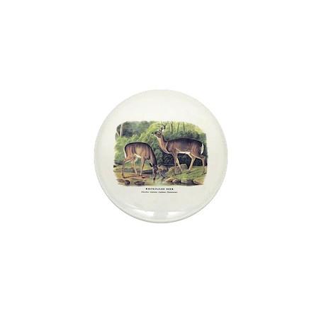 Audubon White-Tailed Deer Mini Button (10 pack)