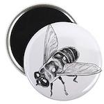 "Flowers & Honey Bee 2.25"" Magnet (100 pac"