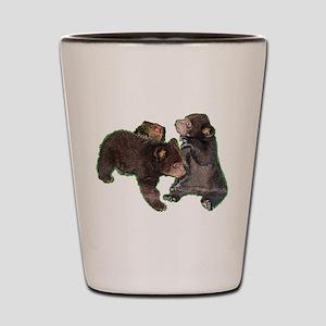 Bear cubs Shot Glass