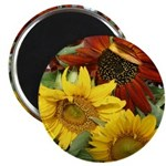 "Three sunflowers 2.25"" Magnet (10 pack)"