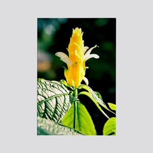 Candlestick Flower - Rectangle Magnet