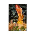 Mideve / Rho Ridgeback Rectangle Magnet (100 pack)