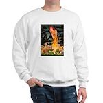 Mideve / Rho Ridgeback Sweatshirt