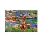 Lilies / R Ridgeback Rectangle Magnet (10 pack)