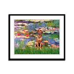 Lilies / R Ridgeback Framed Panel Print