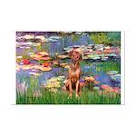 Lilies / R Ridgeback Mini Poster Print