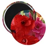"Red Glads 2.25"" Magnet (10 pack)"