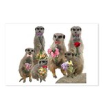 Meerkat Postcards (Package of 8)