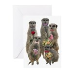 Meerkat Greeting Cards (Pk of 10)