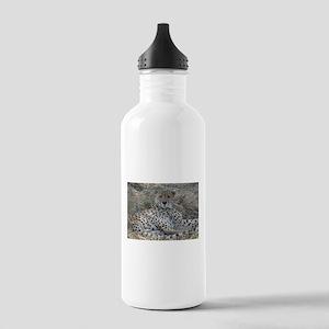 Cheetah 1 Water Bottle