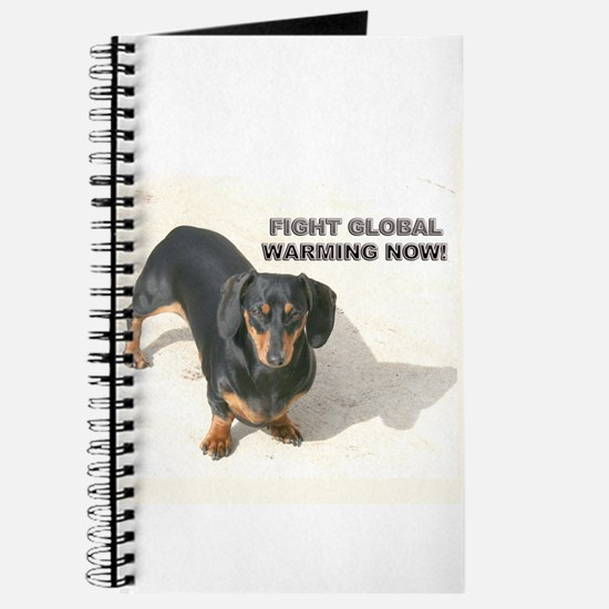 Global Warming D Journal