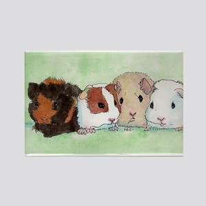 1groupguineapig Magnets
