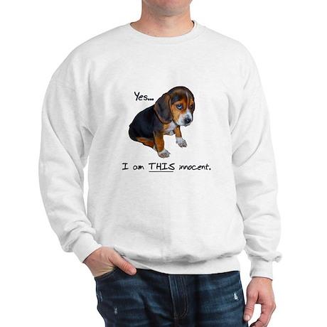 Innocent Puppy Sweatshirt