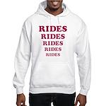 Amusement Park 'Rides' Rider Hooded Sweatshirt