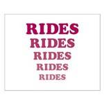 Amusement Park 'Rides' Rider Small Poster