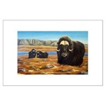 Mighty Muskox Painting Large Poster