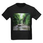 Fern Canyon T-Shirt