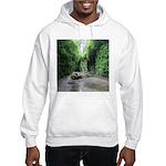 Fern Canyon Sweatshirt