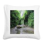 Fern Canyon Square Canvas Pillow