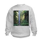 Big Tree Sweatshirt