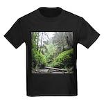 Fern Canyon Redwoods T-Shirt