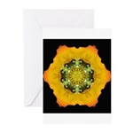 Icelandic Poppy I Greeting Cards (Pk of 10)