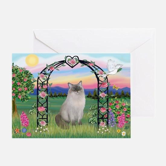 Blossoms / Ragdoll Greeting Card